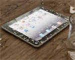 Frog Skin for the iPad