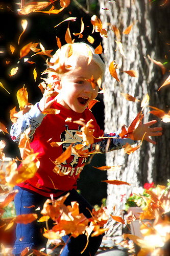 Autumn Sensory Activities