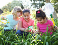 Summer Nature for Children with Special Needs